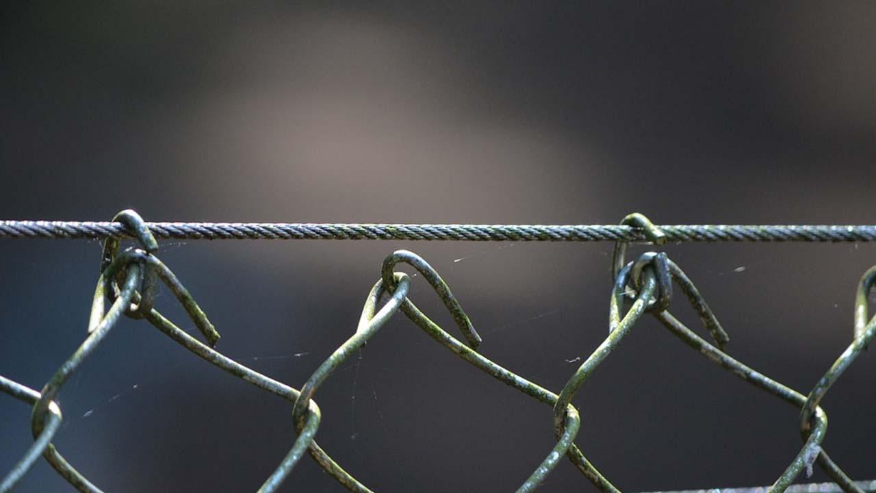 Seguridad perimetral